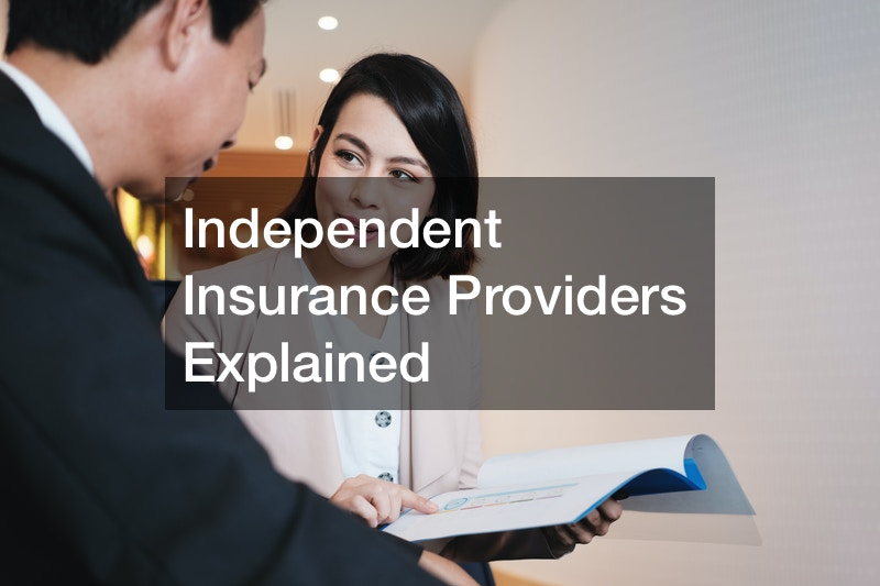 Independent Insurance Providers Explained